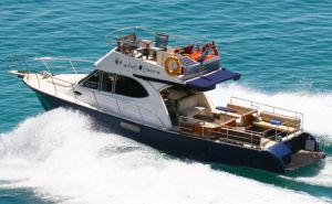 Nautilus Daily Cruises